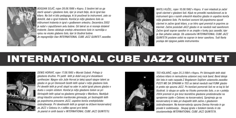 Richwood - Cube Jazz Guitar (3/6)